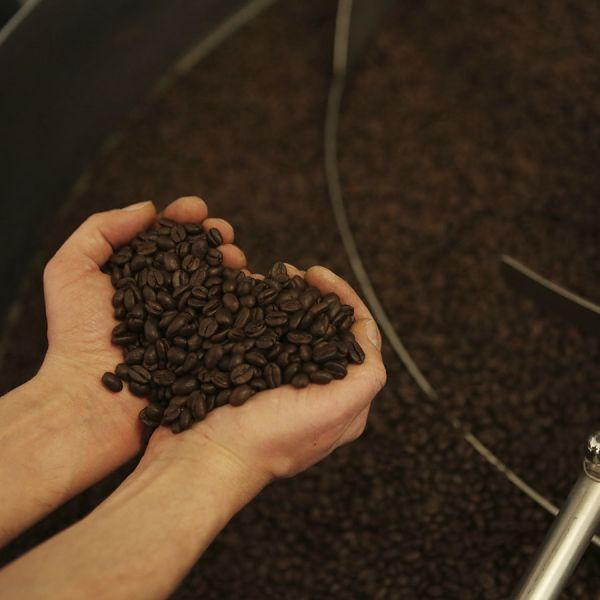 Boot Bio Blend Organic Espresso