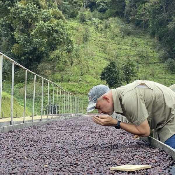 Panamaria Espresso