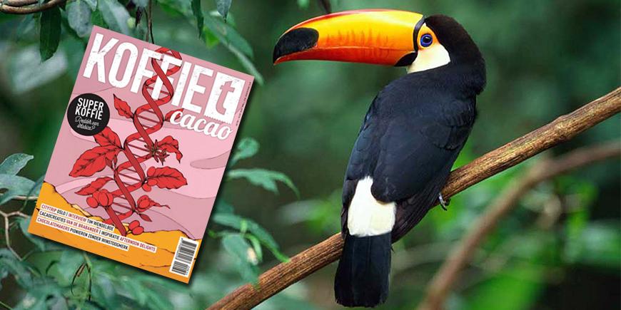 Panama Vogelvrije Koffie - Artikel koffieTcacao Magazine #32
